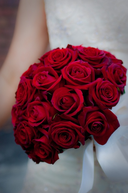 Rose Wedding Bouquet in 2019   Fairytale   Wedding ...