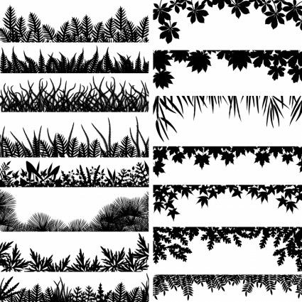 black and white plant leaves vector