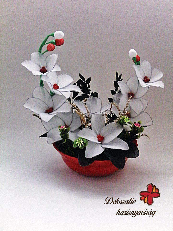 https://www.facebook.com/dekorativharisnyaviragok/photos/a.1569820946607077.1073741831.1544807675775071/1706587572930413/?type=3