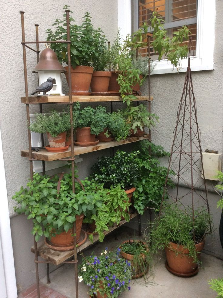 10 Patio Herb Garden Ideas Most, Herb Garden Patio