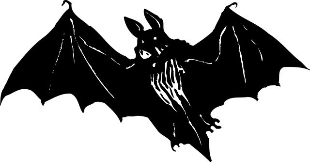 Cerita vampir yang telah menjadi mitos tentang makhluk penghisap darah yang muncul di malam hari untuk menghisap darah manusia di jalanan.