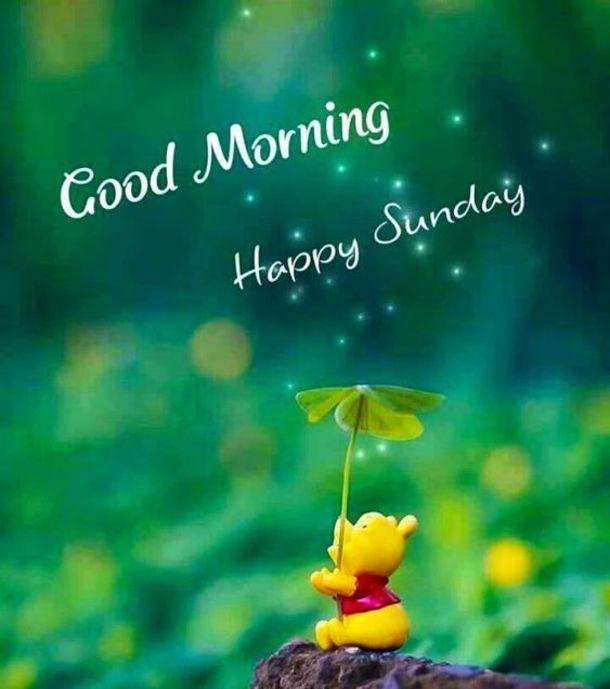 Good Morning Happy Sunday Good Morning Sunday Sunday Quotes Good Morning Quotes Good Morning Happy Sunday Happy Sunday Quotes Good Morning Sunday Images
