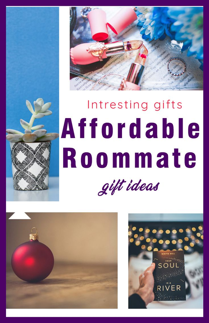 22 affordable roommate gift ideas that your roommate will