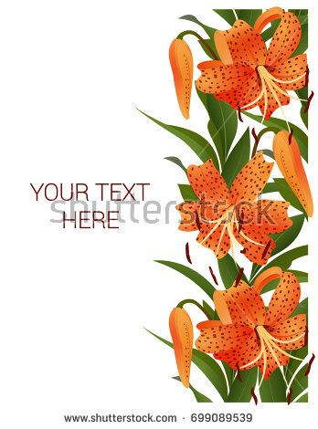 Postcard (invitation) with orange lilies and green leaves