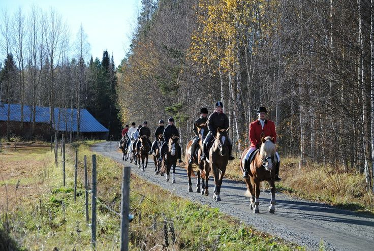 riding school - Alavuden Ratsastajat. South Ostrobothnia province of Western Finland. - Etelä-Pohjanmaa,