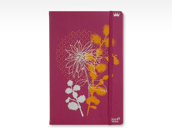 Carnet Robert le heros notebook - Quo Vadis