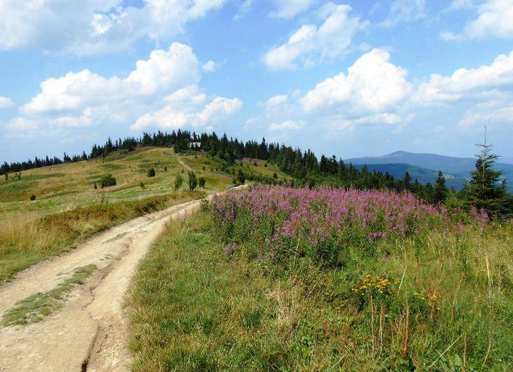 Biegowy raj istnieje w… Polsce! Poznajcie to miejsce!   Biegologia.pl   Bieganie   Jogging   Trening Biegacza