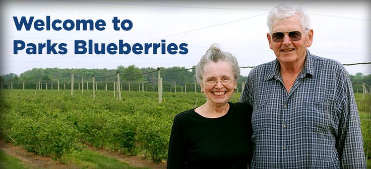 Parks Blueberries and Country Store, Bothwell, Ontario, Canada