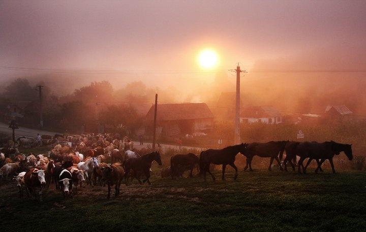 Morning in Chirpar, jud. Sibiu - Photo by Sorin Onisor