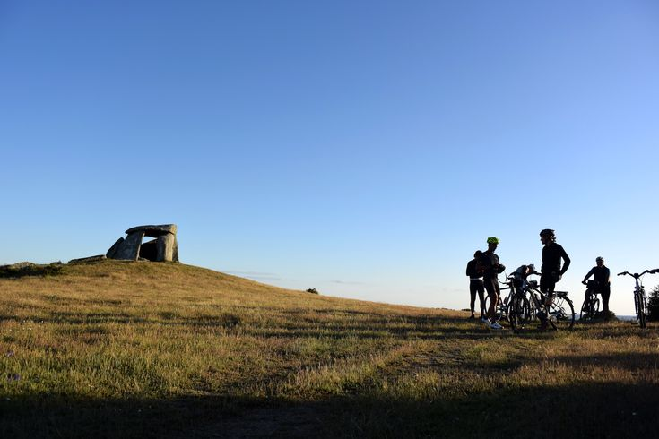 Enjoy what Alentejo has to offer you at its own pace.