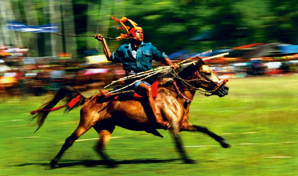 Pasola from Sumba Island in East Nusa Tenggara is an exciting and thrilling festival where opposing teams run into each other on saddle-less horseback, throwing blunt spears known as 'hola' to unseat or hurt their opponents.