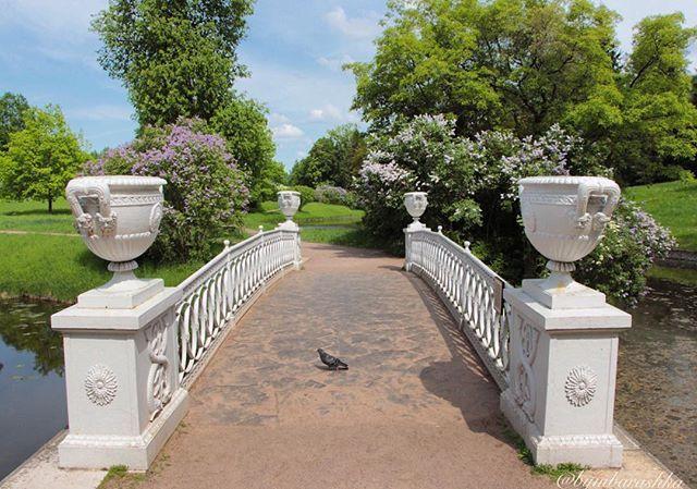Павловск. Чугунный мост построен в 1823 году по проекту зодчего Росси, расположен рядом с Храмом Дружбы. 🌟🌟🌟 Pavlovsk, Russia.