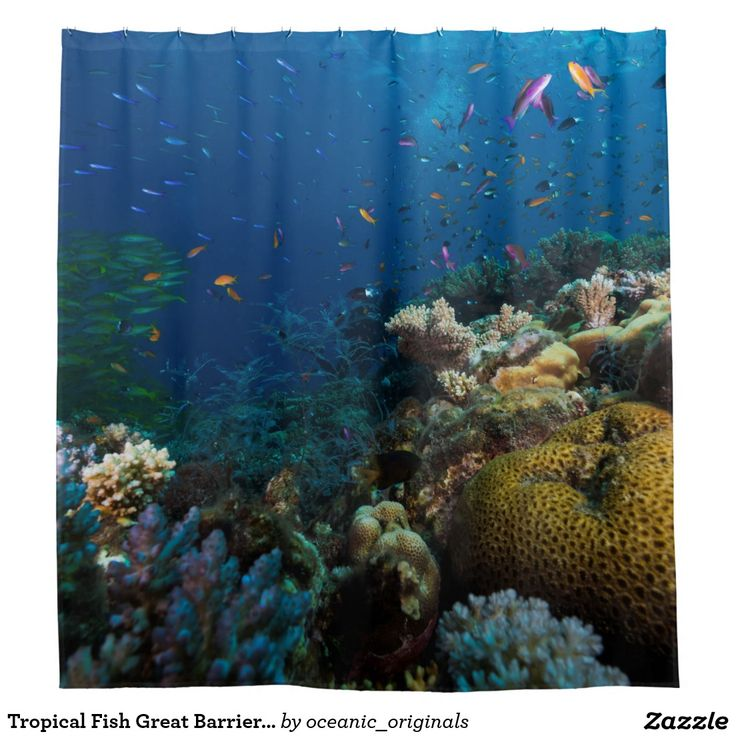 Wonderful shower curtain depicting an amazing underwater scene which features the amazing colorful coral and the awesome variety of tropical fish found on Australia's world heritage listed Great Barrier Reef in the Coral Sea.