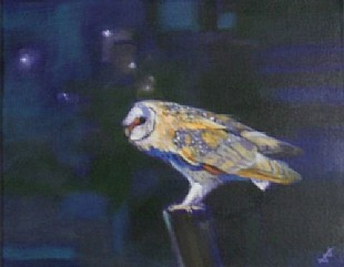 Moonlit Barn Owl by Brin Edwards from House of Bruar