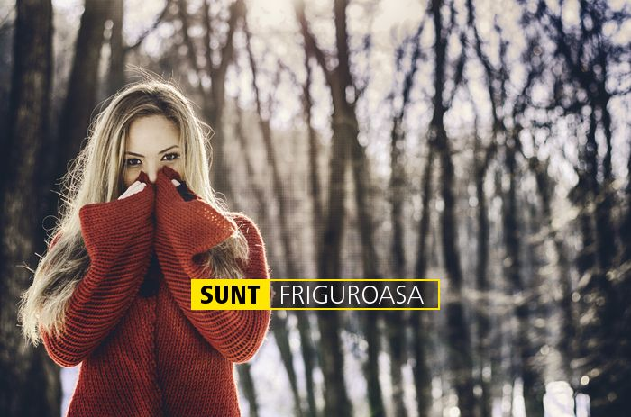 SUNT FRIGUROASA