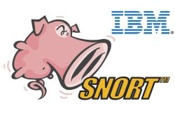 A *very* special pig! A la French truffle cochine: Snort for Network Anomaly Detection