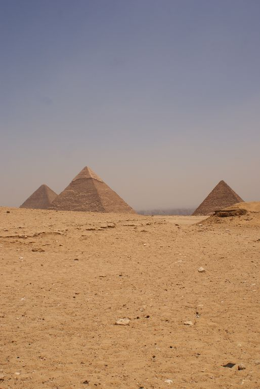 The Giza pyramids from the back of a camel