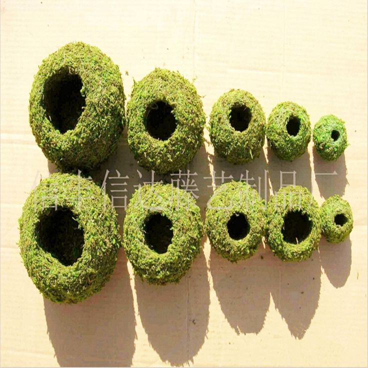 Cheap garden activities, Buy Quality garden aster directly from China garden chair seat pads Suppliers: This price is for6CM out diameter, 3cminner diameter pot