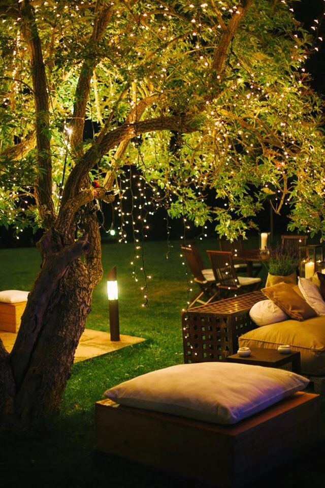 Garden at lit night with fairy lights dangling from the