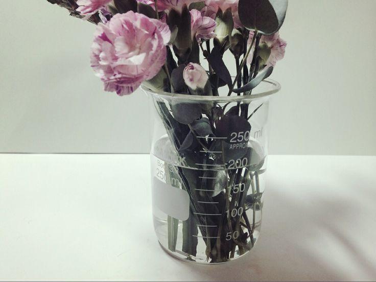 beaker,flower