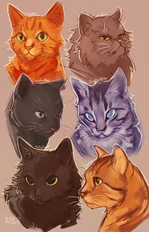 Warrior cats:Firestar, Yellowfang, Crowfeather, Jayfeather, Hollyleaf and Lionblaze