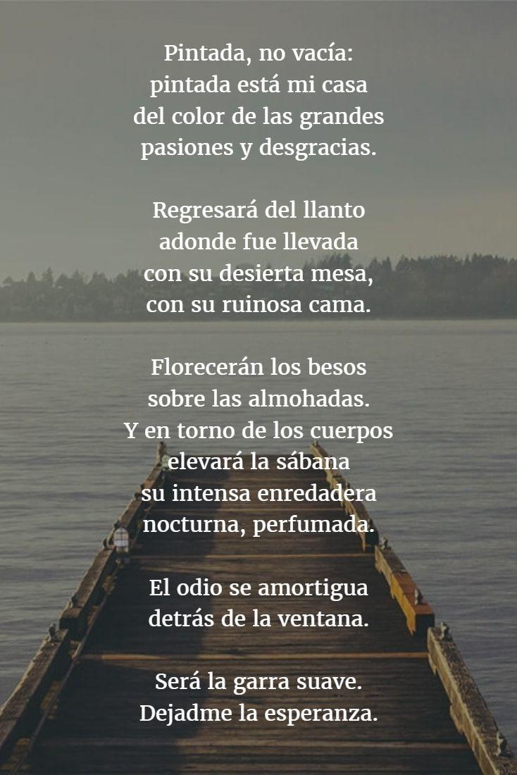 Los mejores Poemas de MIGUEL HERNÁNDEZ 【Versos】 | Miguel