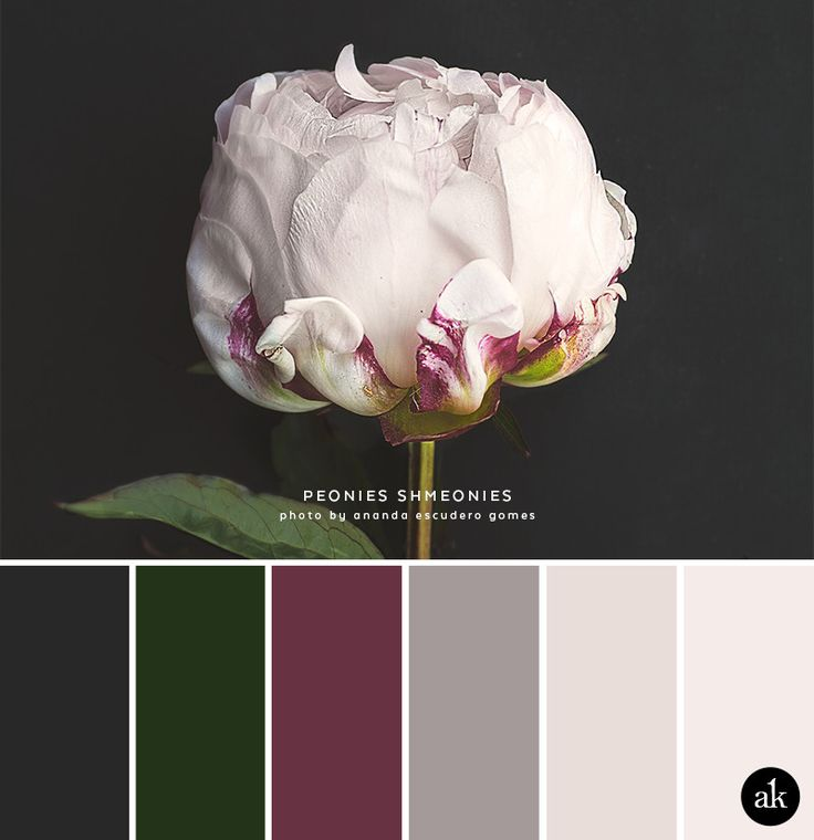 Colour Crush Emerald Green With Pink: Best 25+ Taupe Color Palettes Ideas On Pinterest