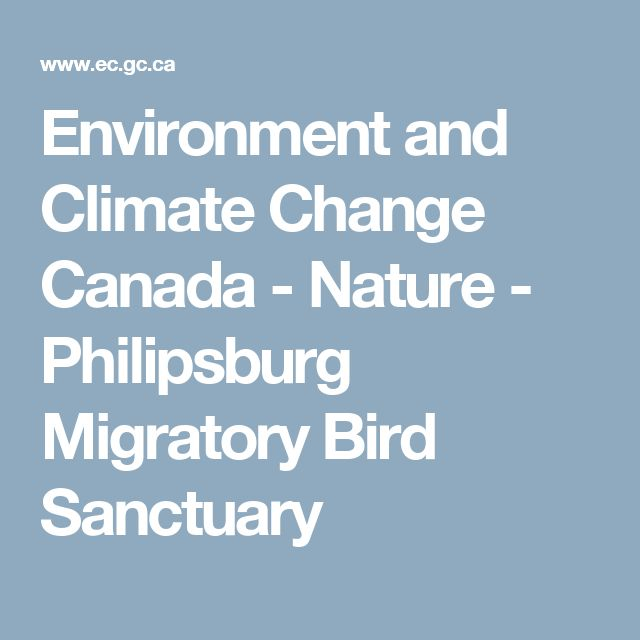 Environment and Climate Change Canada - Nature - Philipsburg Migratory Bird Sanctuary