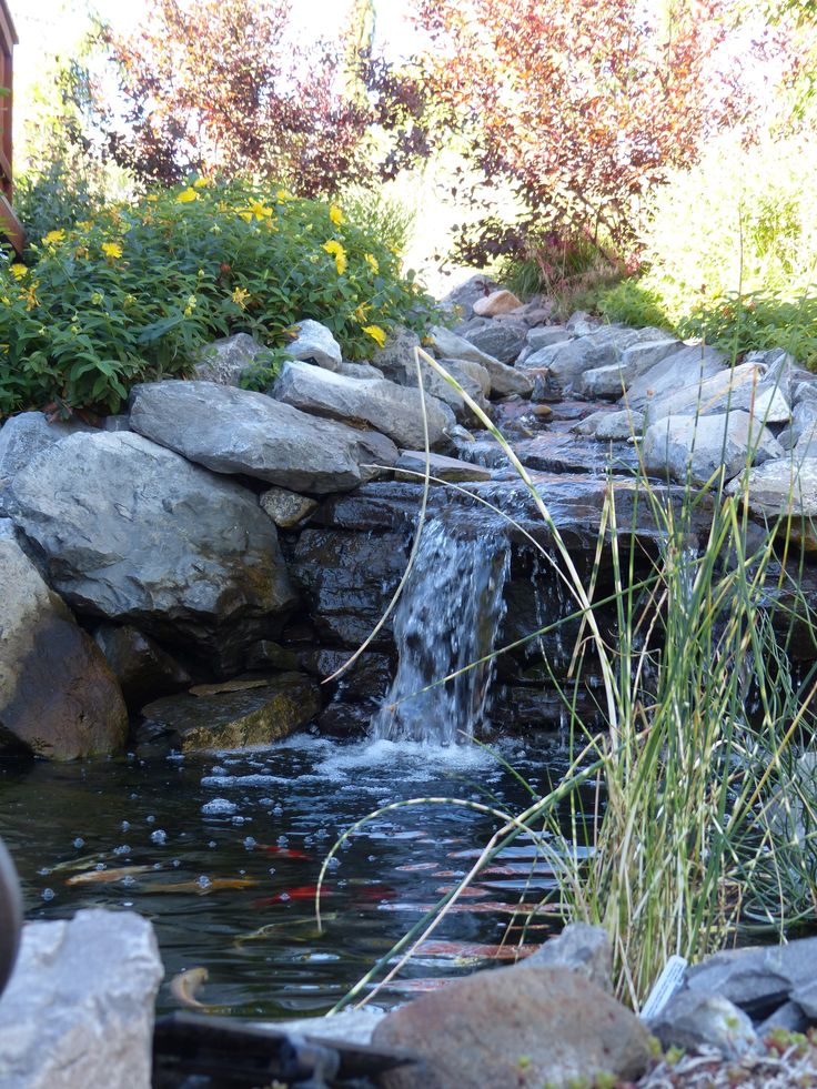 73 Pond Images Let You Dream Of A Beautiful Garden: Koi Ponds, Fall