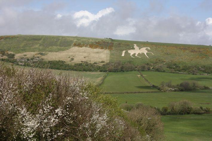 littlenestbox: dorset camping #dorset #uk #camping #whitehorse
