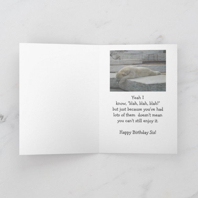 Birthday Sister Fun Age Humor Polar Bear Animal Card Zazzle Com Bear Stuffed Animal Animal Cards Polar Bear