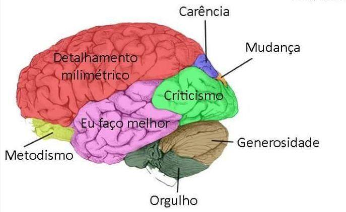 Como seria seu cérebro de acordo com seu signo? - Fatos Desconhecidos