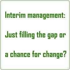 Interim Management will change your business to a large extent.