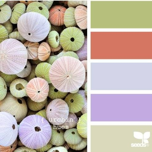 Design Seeds {nature made color} | Book Preview