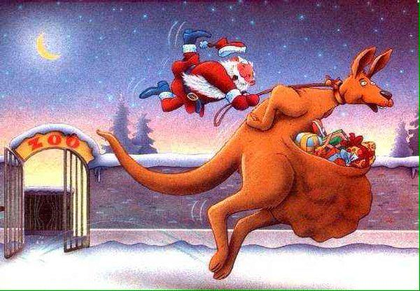Rudolph the red-nosed kangaroo