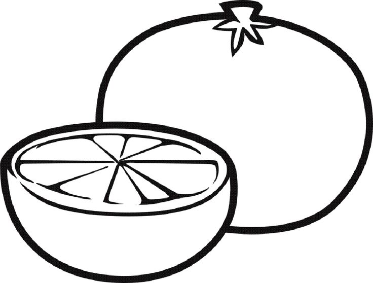 coloring page of a orange - 31 best images about fruits coloring pages on pinterest