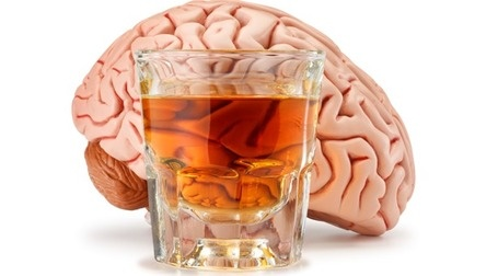 Alcohol, Chemistry and You  Effects of Ethyl Alcohol on Organ Function  http://www.chemcases.com/alcohol/alc-07.htm