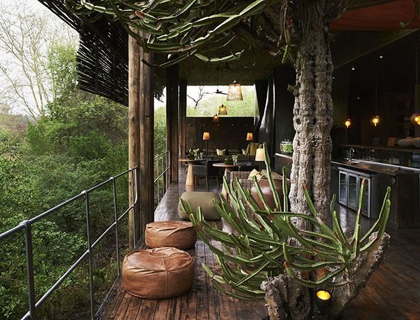 Singita Sweni Lodge. South Africa. Experience the magnificent spectacle and emotional experience of being immersed in the luxuriant vegetation and miraculous environment surrounding the lodge.–. From the terrace of your suite, elevated on stilts, you commune with the lush green forest and animals in the wild.  #relaischateaux #southafrica