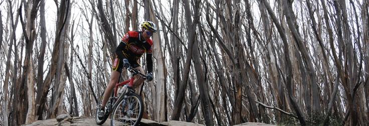 Over 30km of Mountain biking tracks