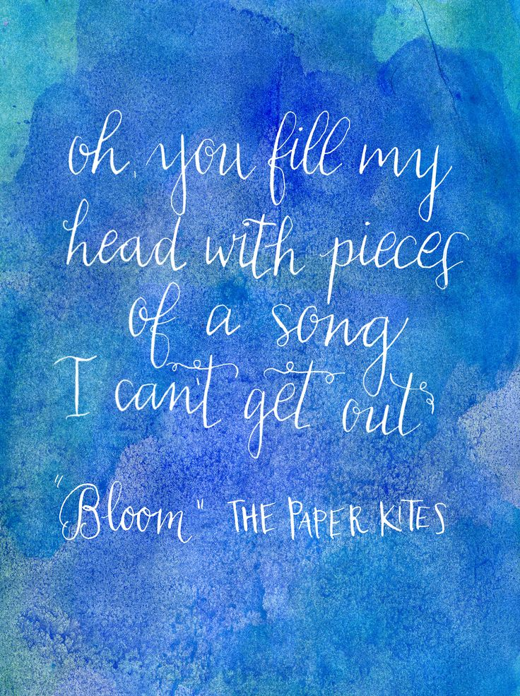 bloom by the paper kites