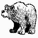 collectif français: sujet d'examen 5Ap L'ours