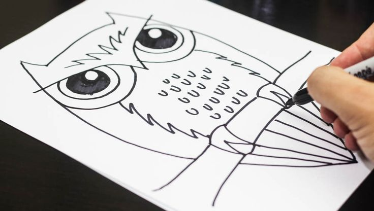 How to draw a super wise owl...just for kids!