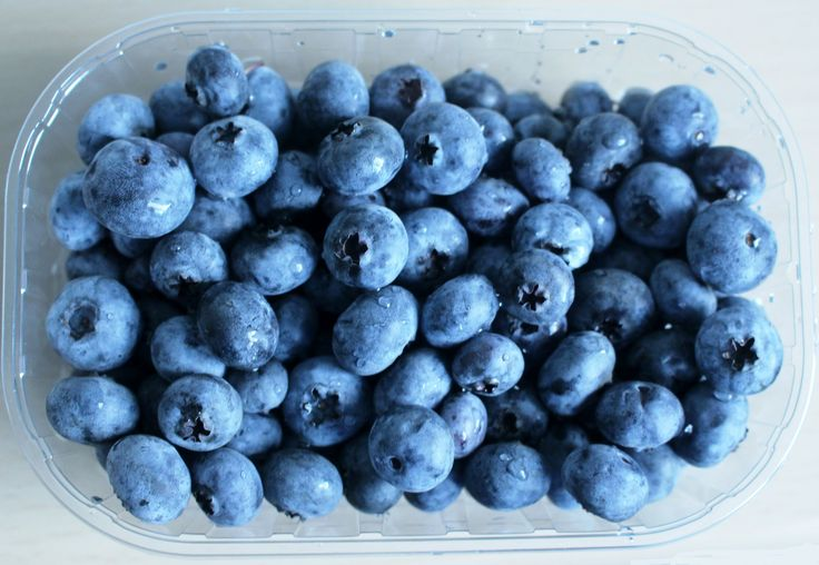 Storage Options - Blueberries in Container