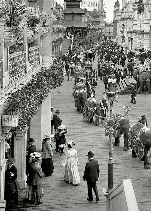 Parada circului cu elefanți la New York, în 1905!