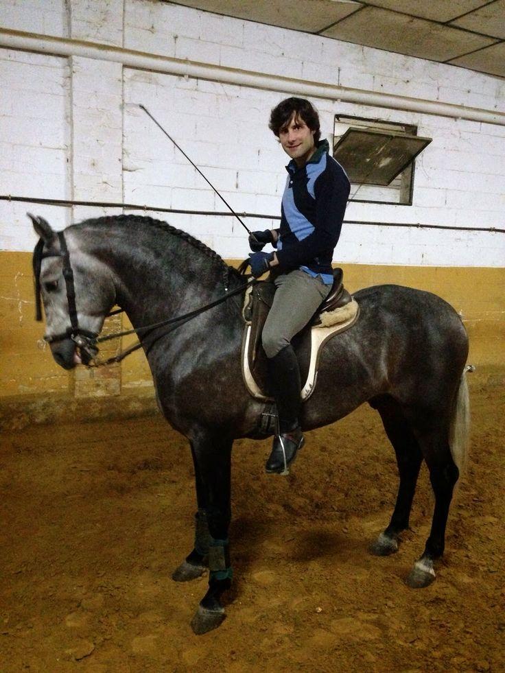 hospital de toreros | Andrés Romero acorta los plazosde su recuperación y ya ha vuelto a ...