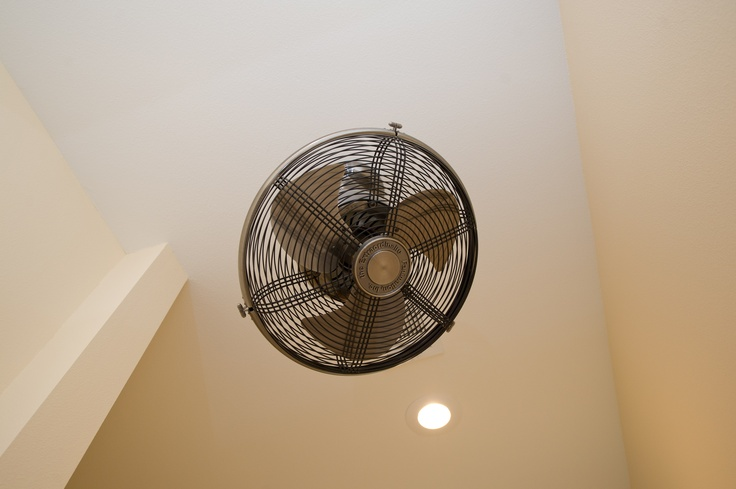 Oscillating ceiling fan roselawnlutheran oscillating ceiling fan lighting and fans pinterest ceiling fans ceilings and fans aloadofball Gallery
