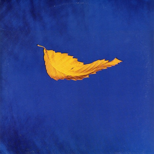 "New Order - True Faith 12"" (1987) Design: Peter Saville"