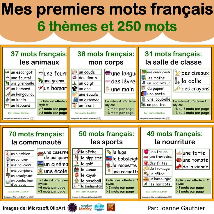 Over 250 illustrated words to help your beginning French students get started.
