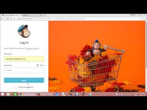 How to set up Email Newsletter Subscription Box in your WordPress Blog ?
