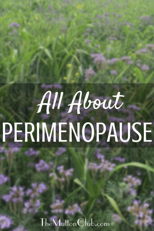 Rachel Lankester looks at what perimenopause is and how it differs from menopause. What to expect, when to expect it and how to help yourself.